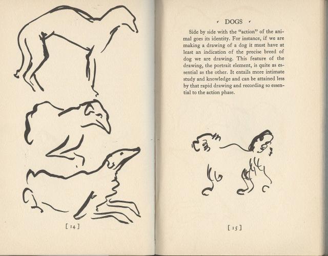 Calder, Animal sketching, p. 14-15