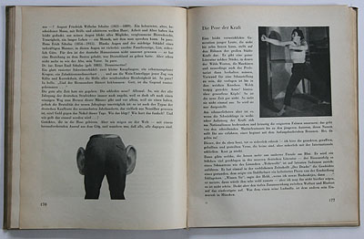 Tucholsky / Heartfield, Deutschland (p. 176-177)